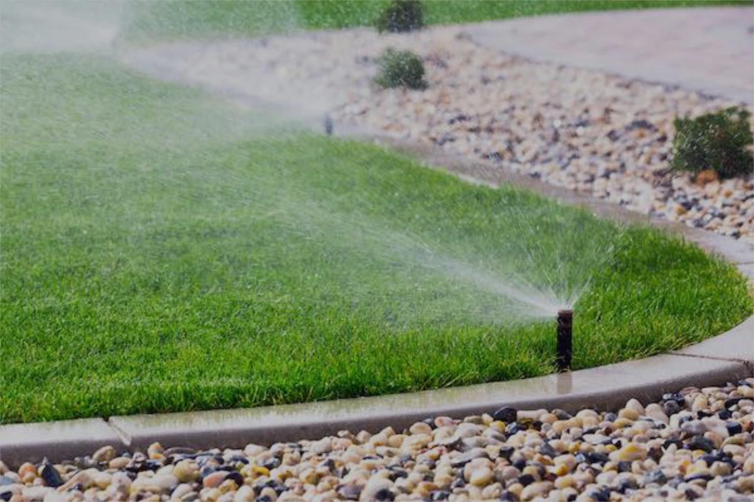 irrigation sprinklers spraying