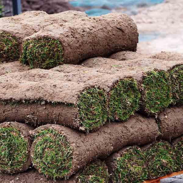 pallet of sod grass